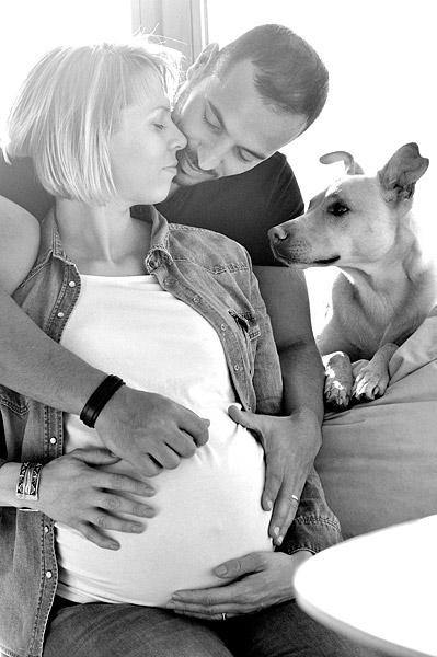 schwangerschaftsfotoshooting berlin draußen zuhause babybauchfotos mit hund