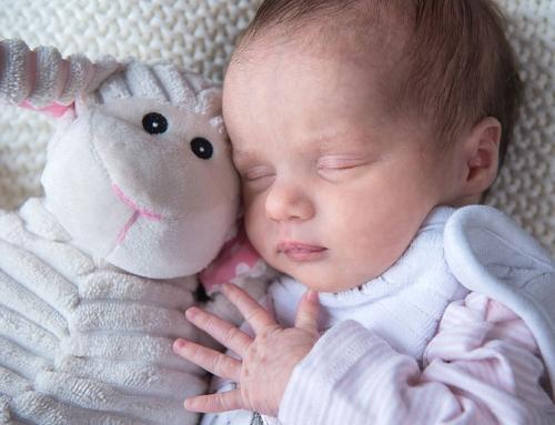 Neugeborenen Fotoshooting im Wochenbett Zuhause | Babyfotos Berlin