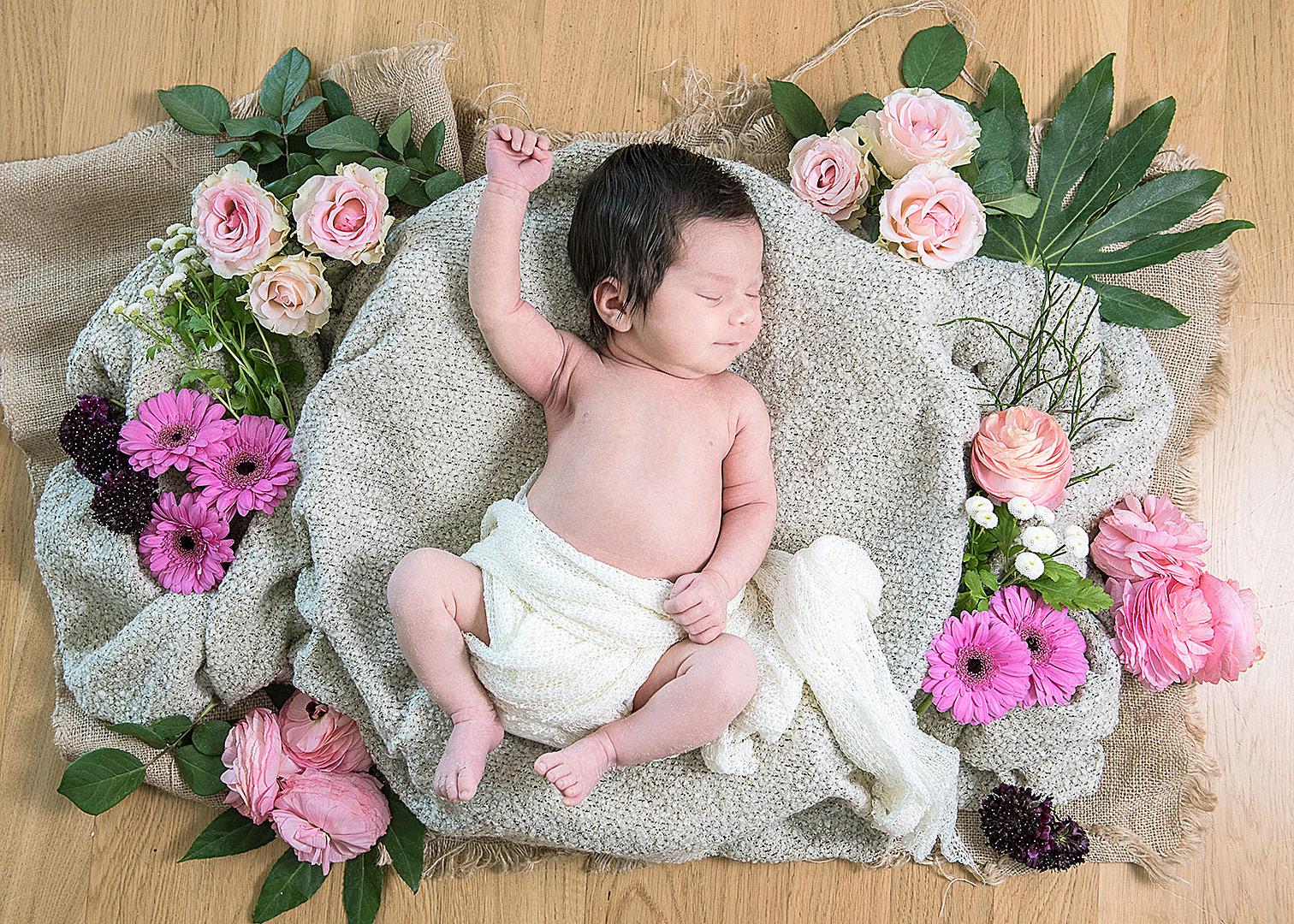neugeborenenfotos zuhause, babyfotograf berlin, fotoshooting zuhause, babyfotos zuhause machen lassen, babyfotos mit blumen